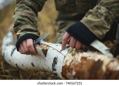 Man traveler in camouflage removes bark from a fallen birch trunk for kindling fire closeup. Extreme travel. Survival in the wild.