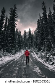 Man traveler walking on dirty road in the forest with snow covered at Yoho national park, Canada