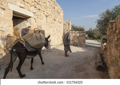 Man traveling with son riding a donkey in a first century town in ancient Galilee in Israel