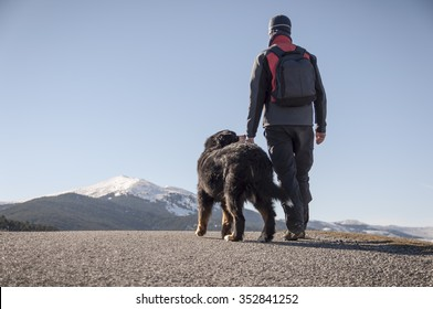 Man trekking with your pet by the mountain road on a sunny winter day