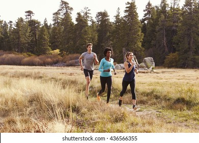 Man and two women running near a forest
