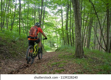 man uses an electric bicycle, e-bike, ebike, pedal on a dirt road, forest, during summer, mountain, sport, adventure, freedom, Alps, Macugnaga, Piedmont, Italy