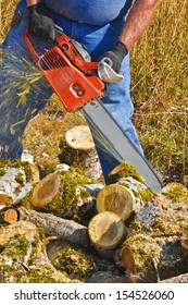 A man is using an orange chainsaw to cut smaller moss covered poplar tree branches lying on the ground.