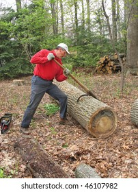 Man using peavey to move large log