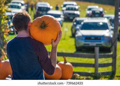 A man viewed from the back is carrying a large pumpkin on his shoulder