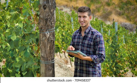 A man in a vineyard with his smiling tablet after checking his grapes traceability and growing for the production of his Italian wine. Concept of: agriculture, wine, drinks, bio, nature and technology