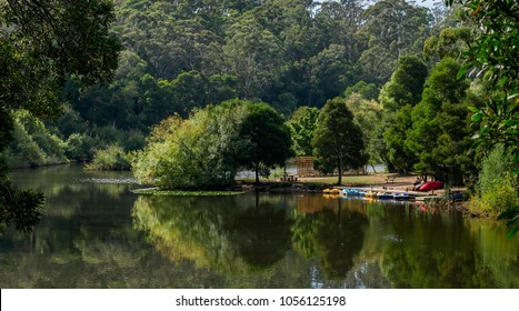 A man waits for tourists to hire his colorful boats on  picturesque Jubilee Lake in Daylesford, Victoria, Australia
