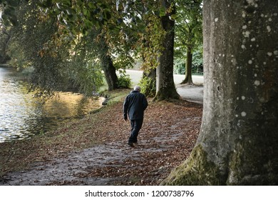 Man walking alone in the forest beside the lake in France