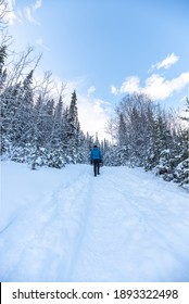 Man walking along a hiking trail in Canada with blue jacket and black jean pants in cold, freezing winter season surrounded by snow covered trees and boreal forest.