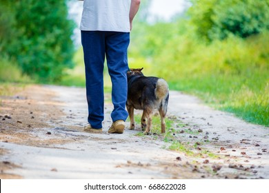 Man walking barefoot back to camera with a dog on dirt road in summer