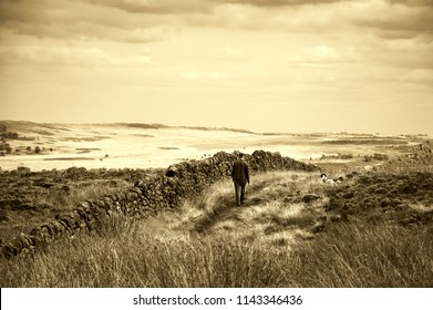 Man walking with dog (back view) in Peak District National Park. England, UK. Sepia photo.