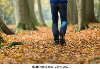 Man walking in the forest on an autumn day.