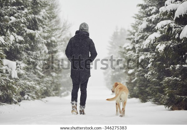 Man walking with his yellow labrador retriever in winter landscape