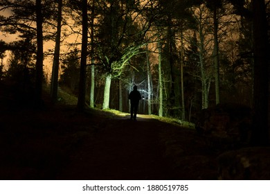 Man walking at night in Swedish forest with flashlight.