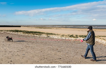man walking on a beach in winter at low tide with a staffordshire bull terrier dog on a very long retractable extendable leash, or lead.