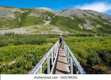Man Walking on Boardwalk Towards Gros Morne Mountain