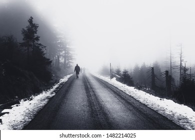 A man is walking on a dark forest road in the fog