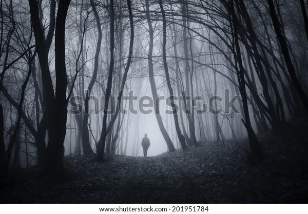 man walking on a dark path through a spooky forest