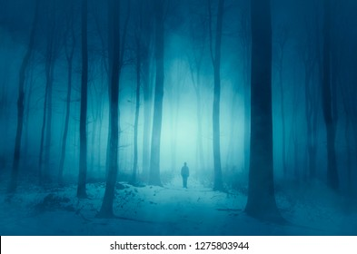 man walking on magical winter snowy path in forest