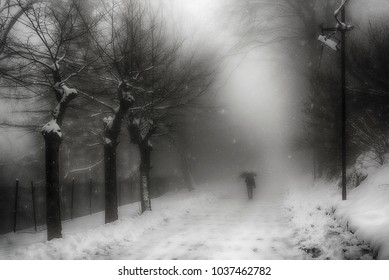 A man walking on the mountain path under the snow in a foggy winter morning