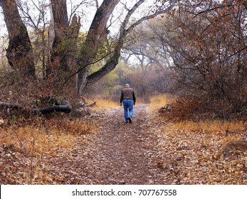 Man walking on riparian path in the fall near the Verde River in Arizona