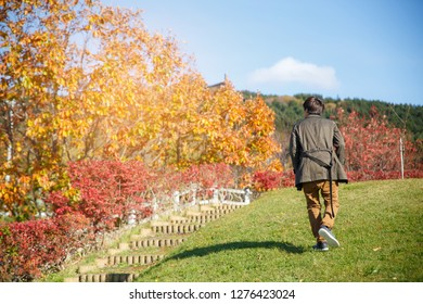 A man walking up on the slope with red yellow tree in autumn season, taken from Hokkaido Japan. Successfull concepts.