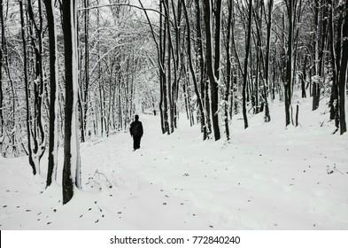 man walking on snowy path in winter forest