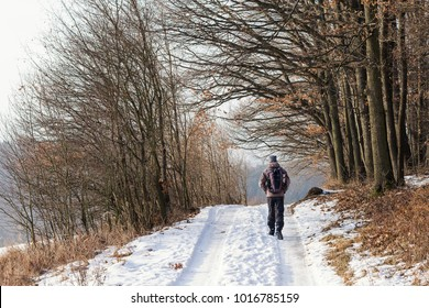 Man walking on winter nature path, back view