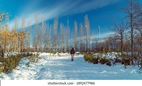 man walking in the park with snow