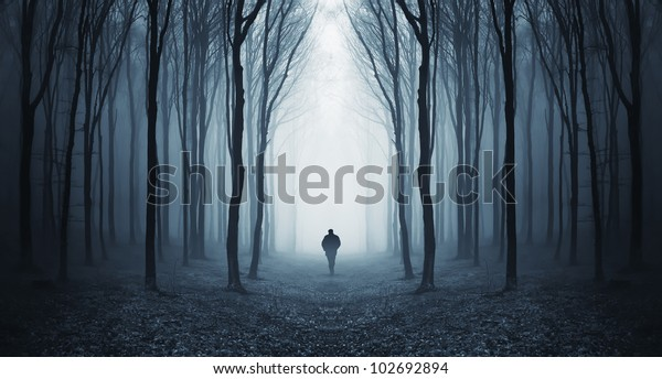 man walking through a fairytale forest