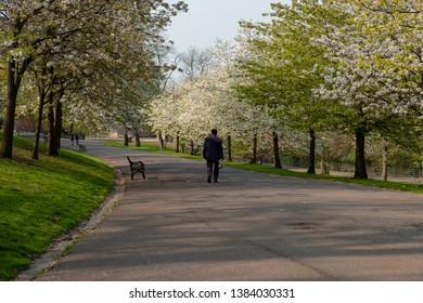 Man walks down park just after sunrise.
