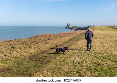 A man walks his dog heading to Reculver Towers,  Reculver, Kent, UK along the cliff top walk on the coast near to Herne Bay and Whitstable.