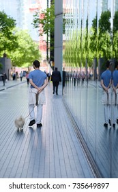 A man walks with a pet along the sidewalk along a building with a glass facade