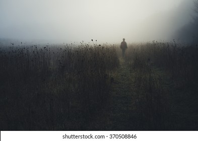 man wandering in nature