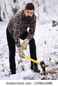 Man with warm gloves puts axe into tree stem in forest. Macho with beard and mustache poses with ax. Woodsman with thoughtful face with trees covered by snow on background. Hipster woodsman concept.