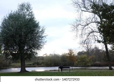 Man watching the landscape in amsterdam vondelpark