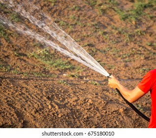 Man watering the lawn with a hose