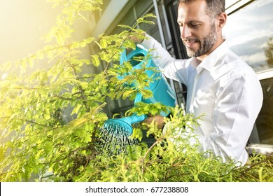 Man is watering the plants in the oggice balcony