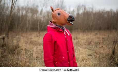 Man wearing horse mask standing in the field