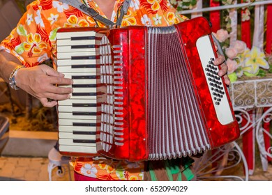 A man wears colorful shirt and plays the red accordion, the street musician.
