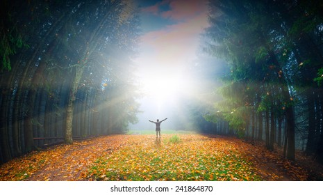 Man, who welcome bright sunlight in a magic autumn forest