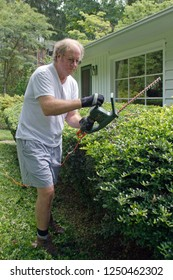 A man wielding electronic pruning shears to shape and prune a long hedge in summertime