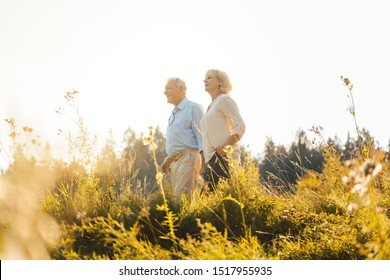 Man and woman, both seniors, embracing each other on a meadow
