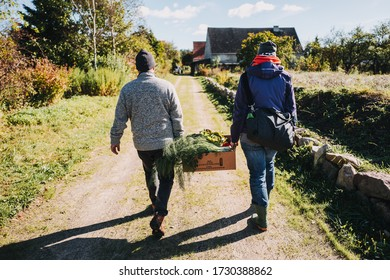 Man and woman carrying fresh vegetables - Shutterstock ID 1730388862