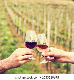 A man and a woman check with glasses of wine. Glasses with red wine in the female and male hands. Clinking glasses of red wine in hands wine tasting, vineyards.