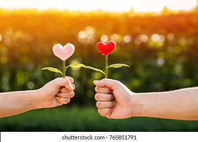 Man and woman hand holding a flower of heart filed together on sunlight in the public park, for give supporting when people get who lack of desire with love concept.