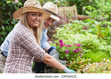 Man and woman with hats and gloves are working in the garden