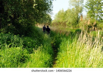 man and woman hiking in nature reserve Kampina, noord brabant, netherlands