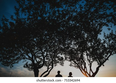 Man and woman hold each other hands tender standing under large trees