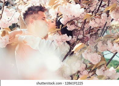 Man and woman kissing in blooming garden on spring day. Couple hugs near sakura trees. Couple in love spend time in spring garden, flowers on background, defocused, close up. Passion and love concept.